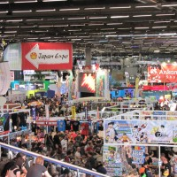 Japan Expo 2011 : Focus sur la Culture